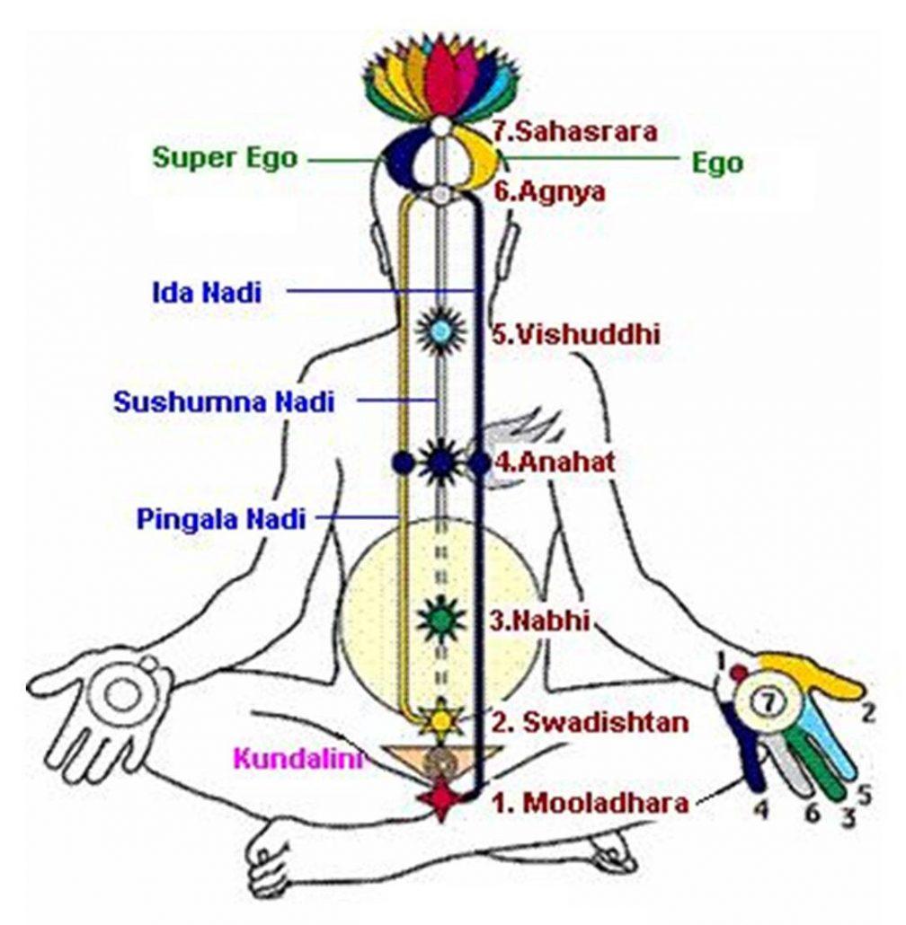 Nirvana Sage
